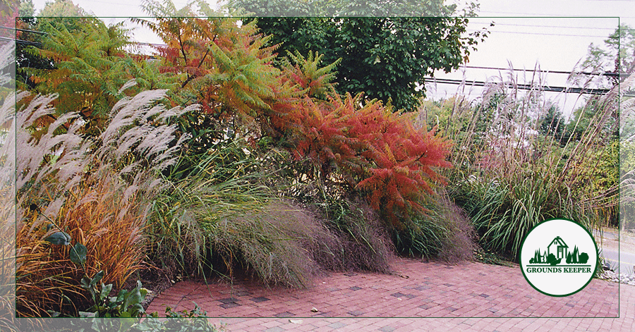 4 Ways To Add Color And Beauty To Your Landscape This Fall