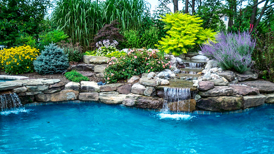 natural pool landscape