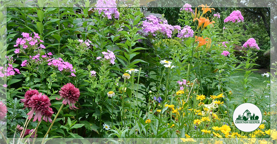 How To Design A Naturalistic Landscape In Your New Jersey Yard